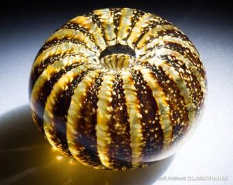White and Golden Brown Sea Urchin / Sand Dollar Hand Blown Glass Paperweight