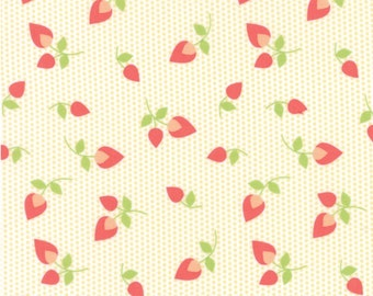 Sundrops cotton fabric by Corey Yoder for Moda fabric 29012 12