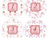 Monthly Baby Milestone Stickers Ballerina Baby Month Stickers Ballet Stickers Monthly Stickers Baby Shower Gift Pink Photo Prop #702
