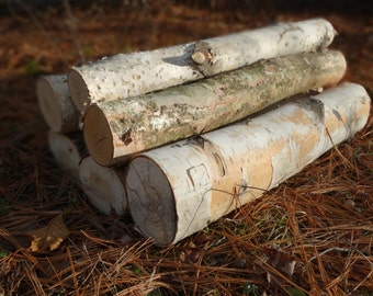 White birch logs - 6 white birch logs - rustic craft supply - rustic decor - fireplace decor