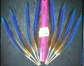 Scarlett Macaw and Blue&Gold Macaw Parrot Feathers !
