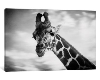 iCanvas Giraffe I Gallery Wrapped Canvas Art Print by Chelsea Victoria