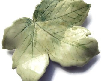 Creamy Green Leaf, Summer Leaves, Summer Gifts, April Finds, Trending Now, Nature