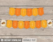 Little Pumpkin Baby Shower - Banner - Bunting - Fall Party - INSTANT DOWNLOAD - Printable PDF with Editable Text