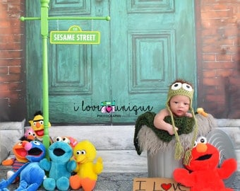 NEW 5ft x 6ft Vinyl Photography Backdrop / Green Sesame Street Door