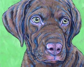 """Custom Pet Portrait Painting on Canvas in Acrylic Ready to Hang 8"""" x 8"""" of One Puppy, Dog, Cat, Kitten, any Animal. Colorful Modern Dog OOAK"""