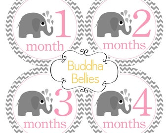 Baby Monthly Stickers - Pink Gray Chevron Elephant Baby Stickers for New Mom Baby Girl - Favorite Baby Shower Gift...Monthly Stickers G206