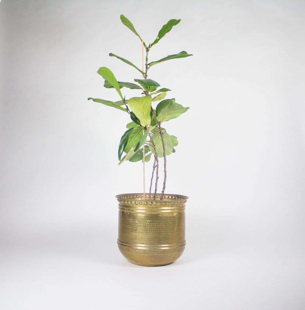 Large Brass Planter Pot With Unique Detail Made In India