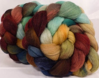 Hand dyed top for spinning - Toadstools - (4.6 oz.) Cheviot