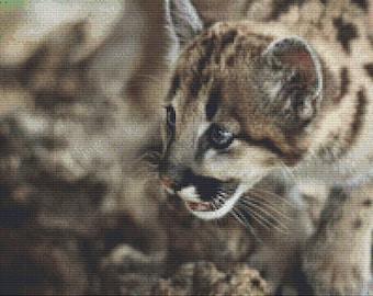 Cute Wild Kitten Cross Stitch Pattern Animal Series Design Instant Download PdF