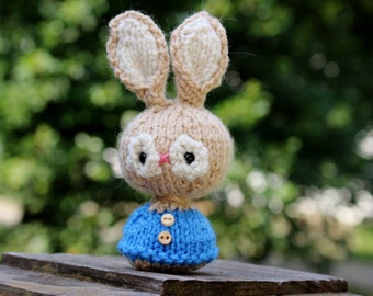 Knit Rabbit Doll toy or Car Mirror Decoration - Miniature Amigurumi Peter Rabbit
