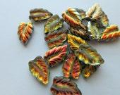 Jewelry Supplies - Iridescent Czech Glass Pressed Leaf Bead - Czech Supplies -  Destash Supplies -