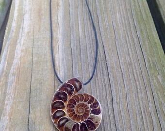 Large Ammonite Necklace