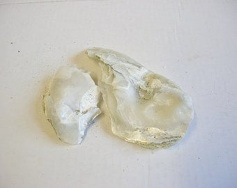 Natural Mother of Pearl / Oyster Shells - 2 Pieces