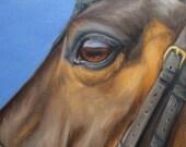 Original Nicolae horse art Nicole Smith Equine Artist oil painting soul eye 6x6 boxed canvas