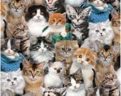 Elizabeth's Studio Fabric Cat Breeds Design By Keith Kimberlin Quilting Sewing Crafting 100% Cotton