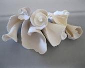 7 Spiral Sea Shells,White Seashells,Ocean, Nautical,Beach Decor,Craft seashells,Display,Craft supplies