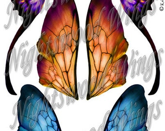 Instant Download OOAK Fairy Pixie Bear Fantasy Wing sheet 15
