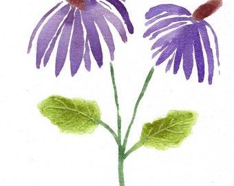 Original Water Color Art - Purple Coneflowers Echinaceas - Botanical Art - Nature
