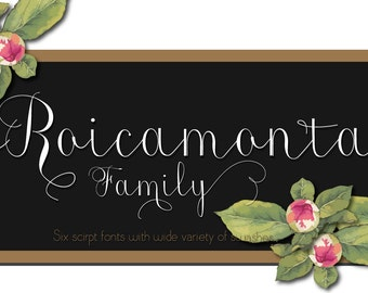 Digital Fonts | INSTANT DOWNLOAD | Roicamonta Font Family | six font files | Open Type Fonts (.otf)
