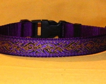 Purple and gold collar