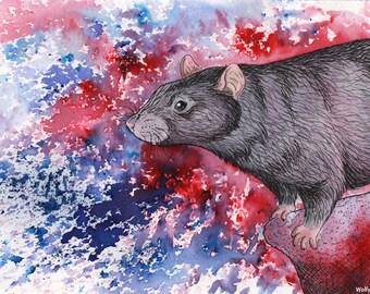 Explosion of Colour - Original Black Rex Rat Mixed Media Painting - SALE