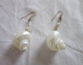 Vintage Iridescent Real Shell Large Drop Dangle Earrings