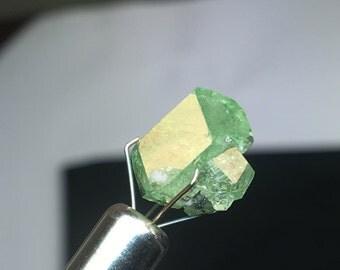 Tsavorite Green Garnet  GG1003