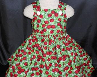 Girls Dress, Ladybug Dress, Lucky Ladybug Birthday Dress, Unique, Handmade, Colorful Ladybug Dress, Sizes 6 mo.to girls size 12,  Ladybug