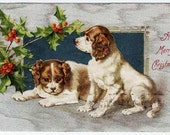 1907 Antique/Vintage Linen Christmas Postcard Cocker Spaniel Puppies