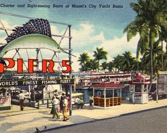 Miami's City Yacht Basin Pier 5 Vintage 1940's Postcard Fishing Charter and Sightseeing Boats
