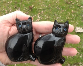 Black Onyx Cat