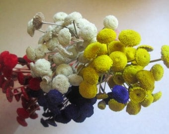 Purple, Yellow, Red, Natural Floral Buttons for DIY crafts, Wedding Decor, 120 dried flowers
