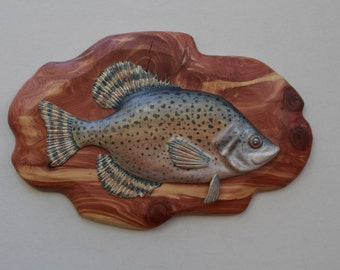 Fish Carving- Crappie, Red Cedar