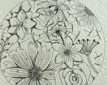 Floral circle pen drawing