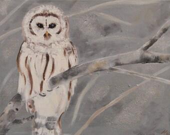 White Owl Original oil/acrylic Painting on canvas, Owl fine art, 14x11