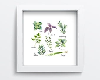 Watercolour Herbs, Wall Art Print, Kitchen Printable, Basil, Thyme, Oregano, Parsley, Mint, Rosemary {Cook/Chef Gift}