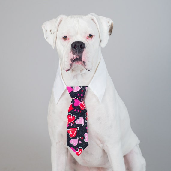 Valentine's Black with Pink & Red Hearts Neck Tie for Cats and Dogs - Collar Accessories for Dogs!
