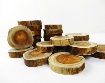Tree Slices, Wood Slices, Yew Wood Slices, Crafts Wood, Woodworking, DIY, Wood Rounds, Small Tree Slices