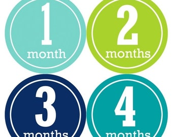 Monthly Baby Stickers Baby Boy Stickers Baby Month Milestone Stickers Baby Month Stickers Month to Month Bodysuit Stickers Shower Gifts 165