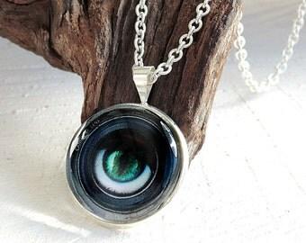 Eye Glass Dome Necklace, Photo Jewelry, Glass Pendant, Art Print Necklace
