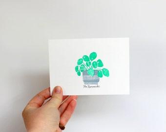 Pilea Postcard