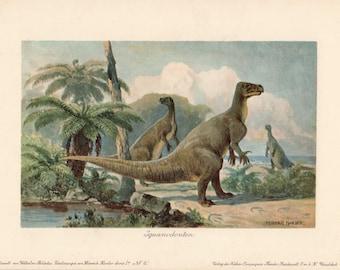 1900 Antique Dinosaur Print Iguanodon Prehistoric Jurassic and Cretaceous Period Heinrich Harder Lithograph