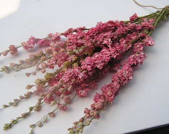 Pink Dried Larkspur, Bunch of Larkspur, Wildflowers, Dried Bunch of Larkspur, Dried Wedding Flowers, Dried Flowers