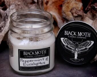 8 oz Pet Odor Eliminator Scented Soy Candle in Mason Jar