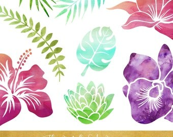 Watercolor Clipart - Tropical Flora - INSTANT DOWNLOAD - 11 .PNG Images