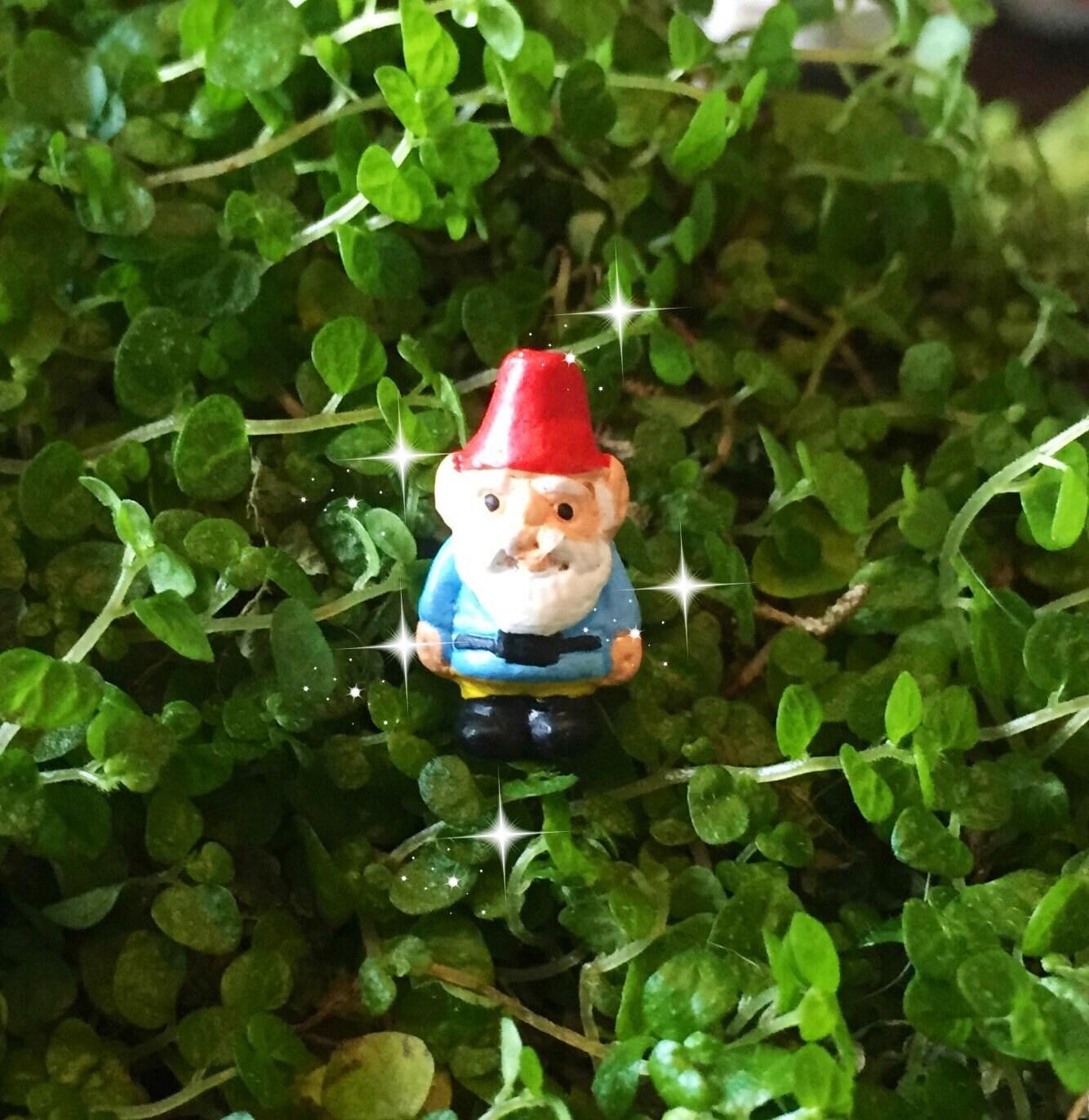 Gnome Garden: Fairy Garden, Micro Mini Gnome, Tiny Gnome, Mini Gnome