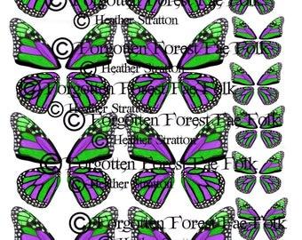Green & Purple monarch butterfly wings