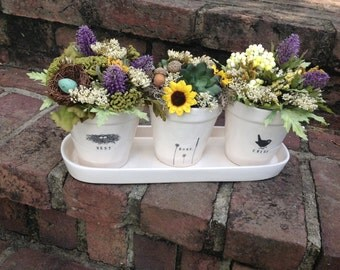 Cute Planter Arrangement !!! 3 ceramic planters on a ceramic tray !!!!