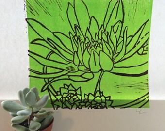 succulent art print - lime green purple
